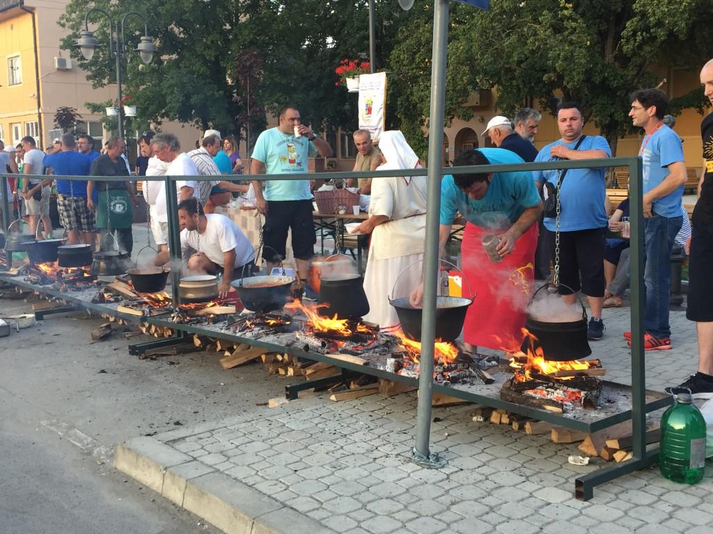 53 53 Apatinske ribarske večeri