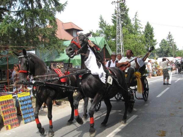 "FESTIVAL HRANE, TRADICIJE I PRIRODE – ""BODROG FEST"" 2018"