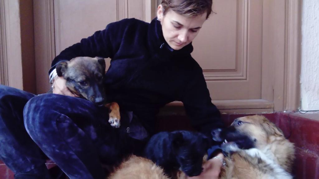 Psi jasmina sogić sa svojim psima