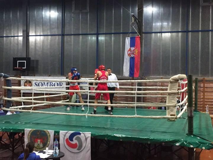 BK Apatin, boks, bokserski klub (2)