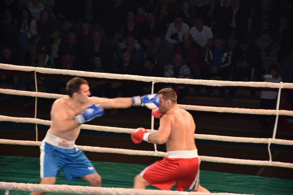 Todorovic Fight Night (57)