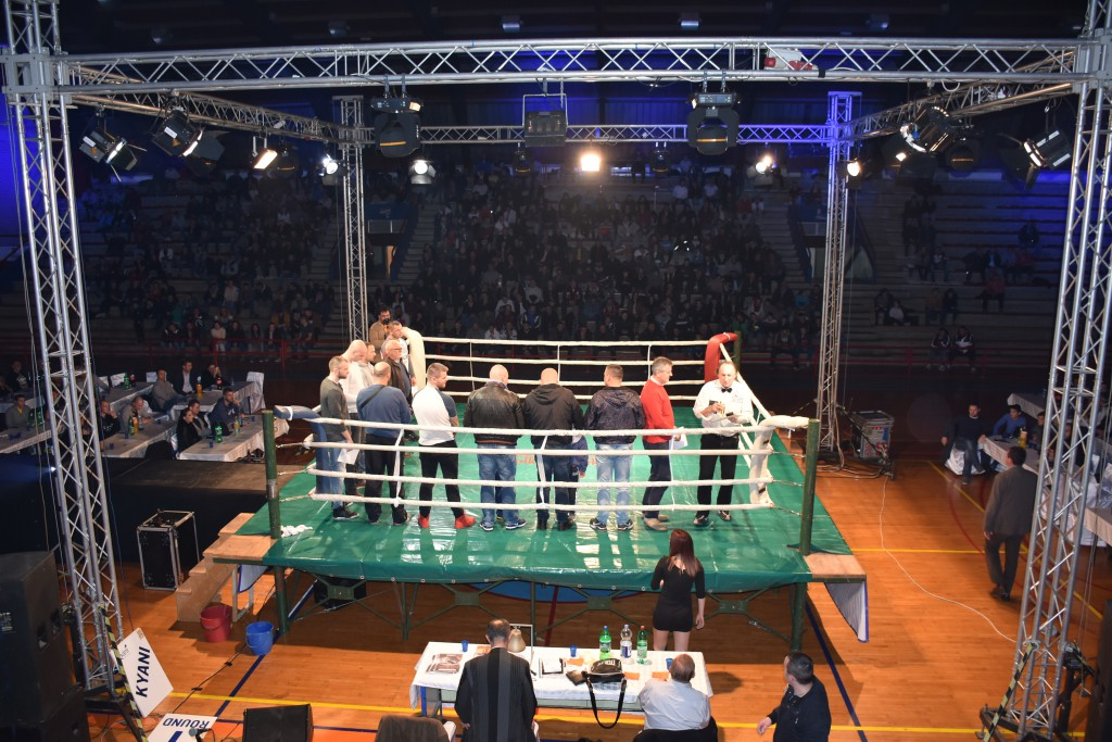 Todorovic Fight Night (90)