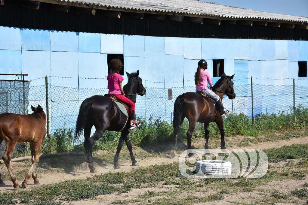 Kamp škole jahanja, Apatin,avgust 2017 (14)