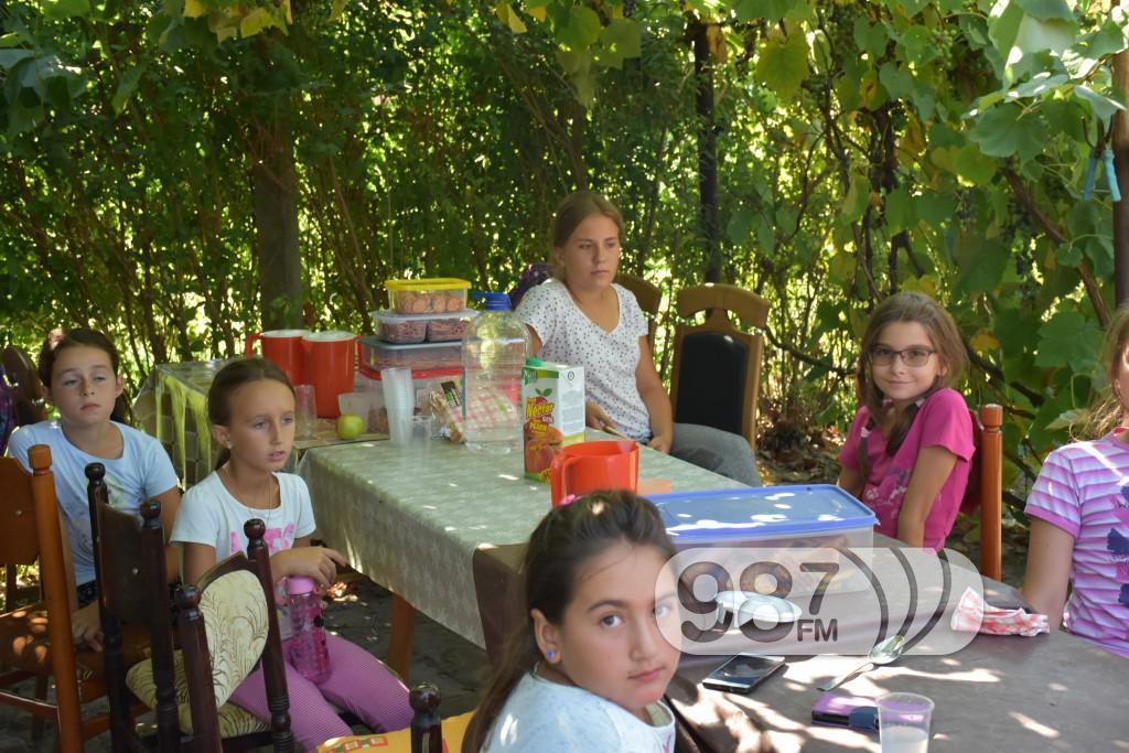 Kamp škole jahanja, Apatin,avgust 2017 (30)
