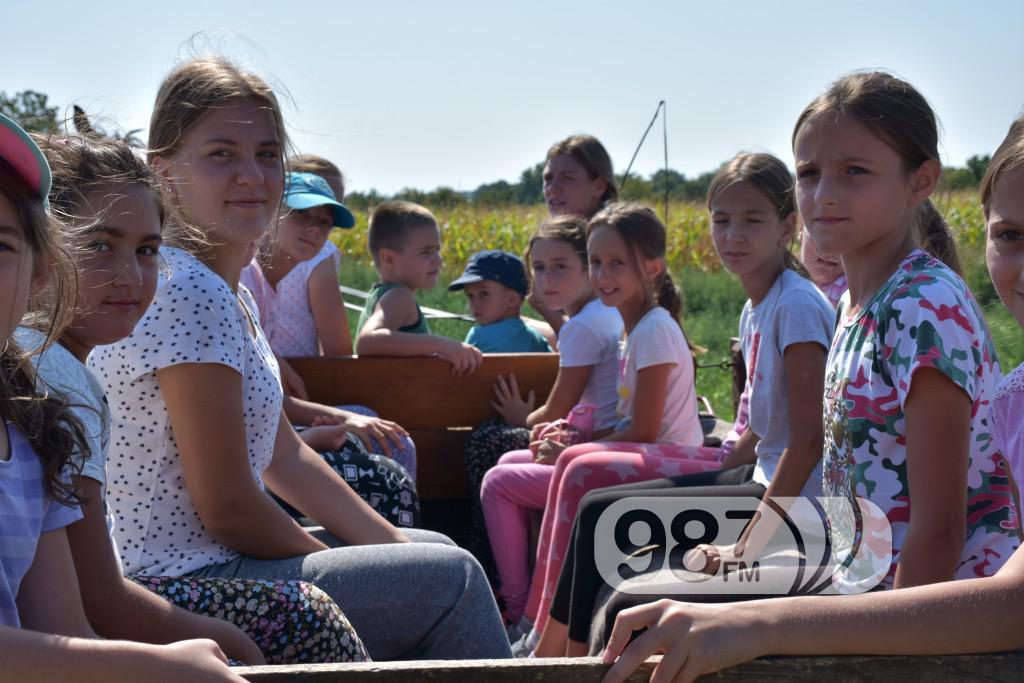 Kamp škole jahanja, Apatin,avgust 2017 (48)