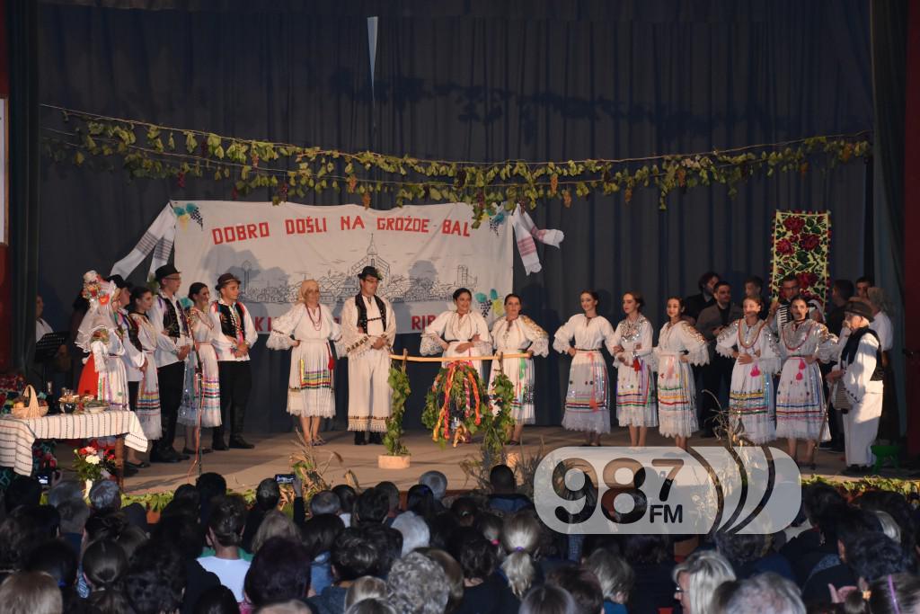 Grozdjebala sonta 2017 (1)
