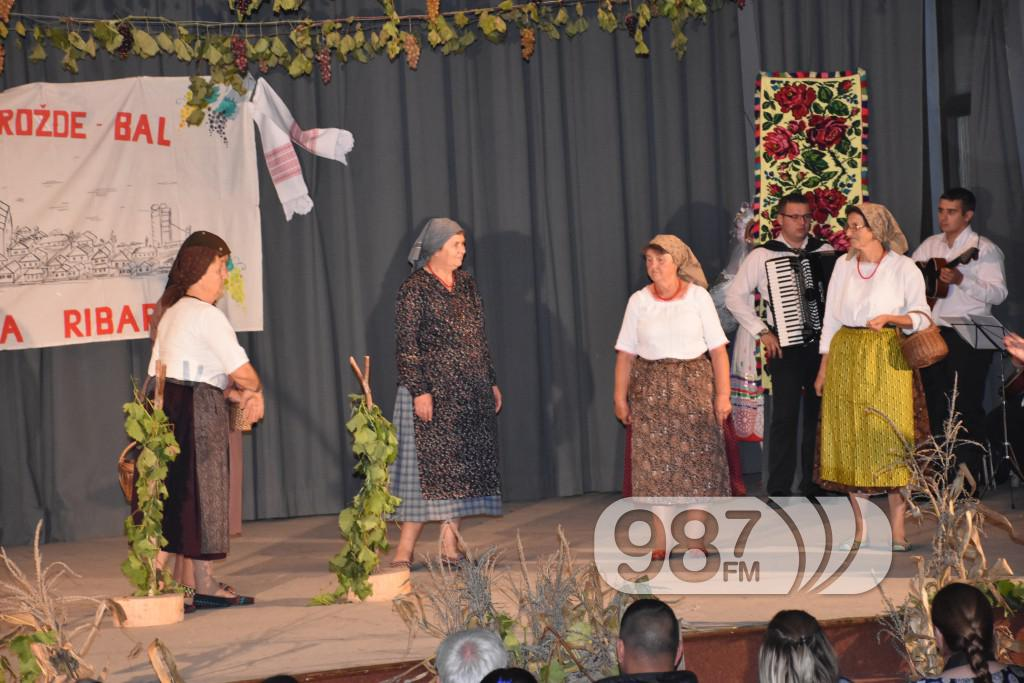 Grozdjebala sonta 2017 (24)