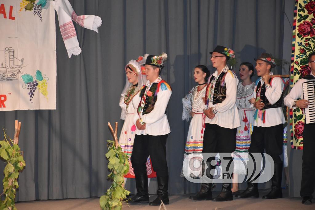 Grozdjebala sonta 2017 (27)