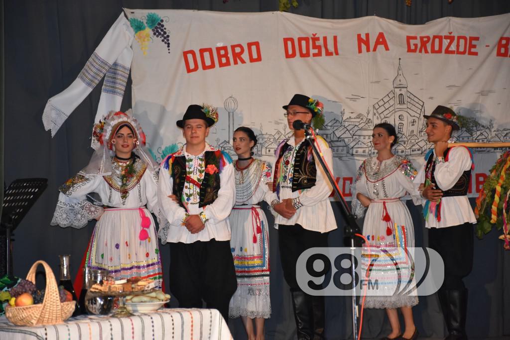 Grozdjebala sonta 2017 (28)