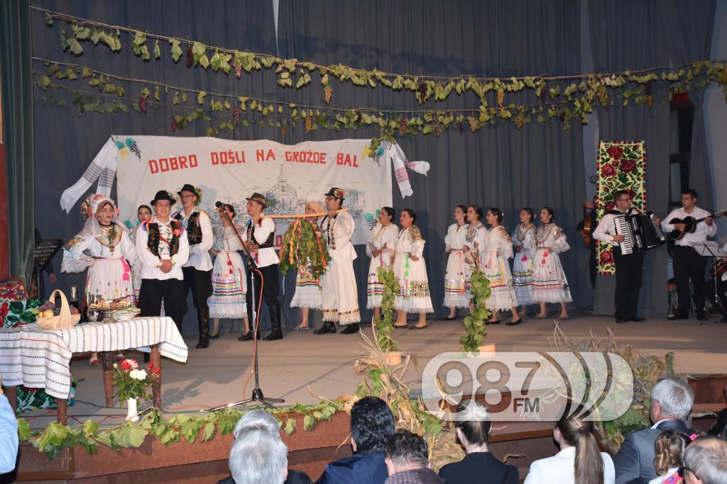 Grozdjebala sonta 2017 (29)