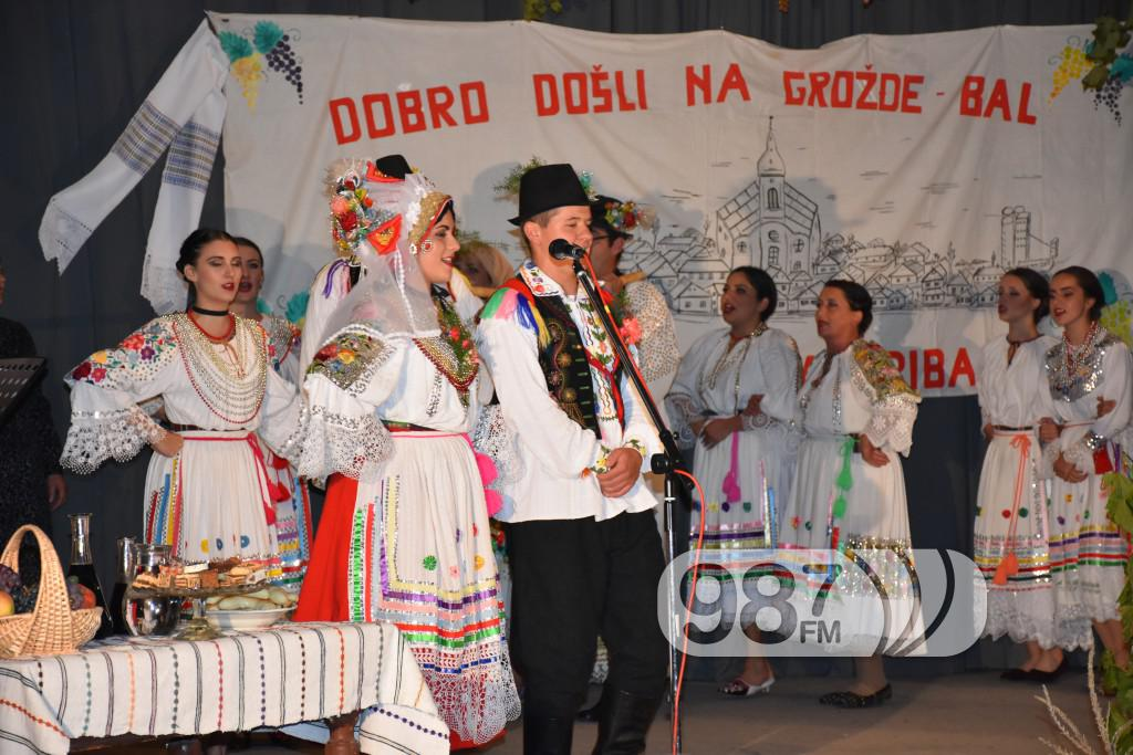 Grozdjebala sonta 2017 (30)