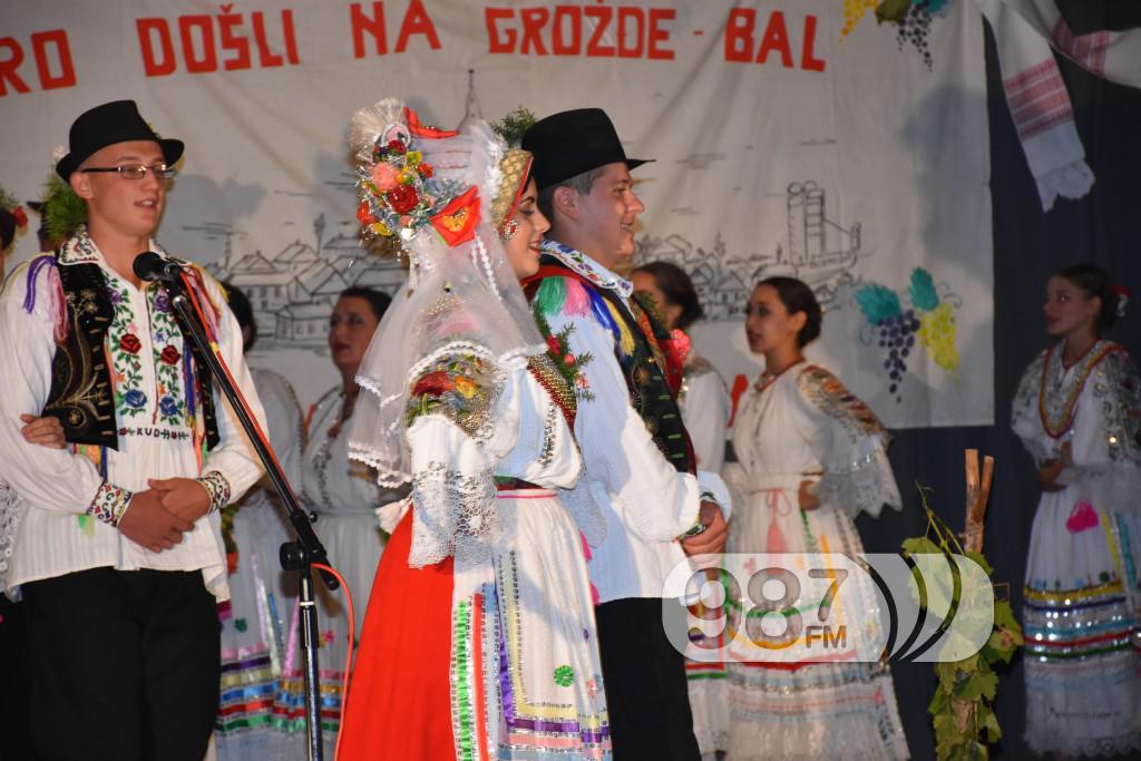 Grozdjebala sonta 2017 (31)