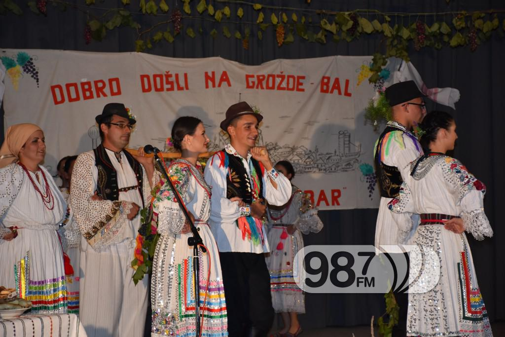 Grozdjebala sonta 2017 (32)