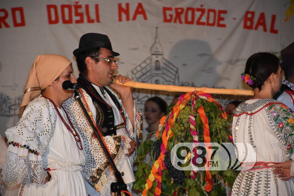 Grozdjebala sonta 2017 (34)
