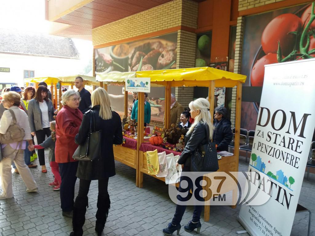 Međunarodni dan starih osoba, Apatin 2017 (3)