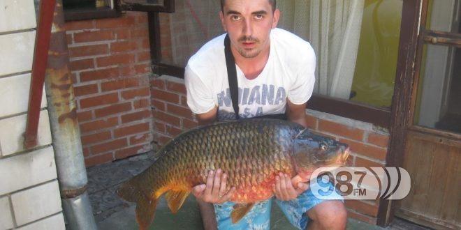 PECANJE /sportski ribolov-pecanje iz hobija / - Page 11 Saran-nemanja-mandi%C4%87-660x330