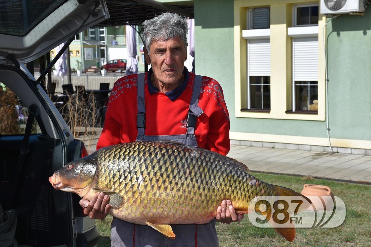 PECANJE /sportski ribolov-pecanje iz hobija / - Page 11 %C5%A0aran-kapitalac-%C5%A0uvak-Ivan-205-kilograma-kapitalni-ulov-10